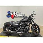 2020 Harley-Davidson Sportster Iron 883 for sale 201145066