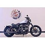 2020 Harley-Davidson Sportster Iron 883 for sale 201146013