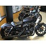 2020 Harley-Davidson Sportster Iron 883 for sale 201155595