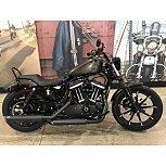 2020 Harley-Davidson Sportster Iron 883 for sale 201179531