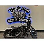 2020 Harley-Davidson Sportster Iron 1200 for sale 201181008