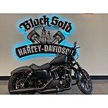 2020 Harley-Davidson Sportster Iron 883 for sale 201181059