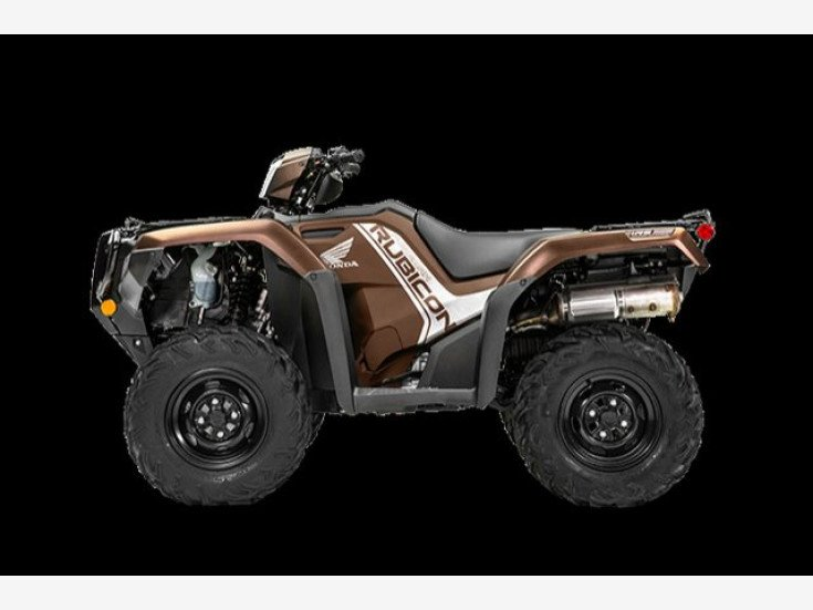 2020 Honda Fourtrax Foreman Rubicon For Sale Near Muskegon