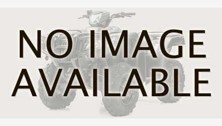 2020 Honda FourTrax Foreman for sale 200856763