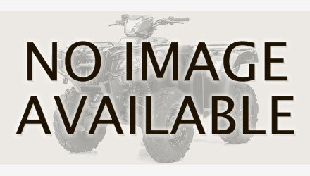 2020 Honda FourTrax Foreman for sale 200856764