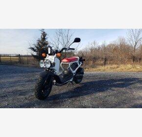 2020 Honda Ruckus for sale 200961329