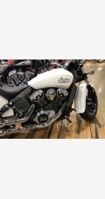 2020 Indian Scout for sale 200800775