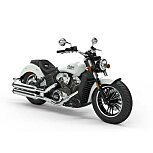 2020 Indian Scout for sale 200803793