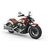 2020 Indian Scout for sale 200928219
