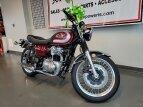 2020 Kawasaki W800 for sale 201026523
