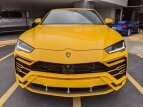 2020 Lamborghini Urus for sale 101498817