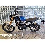 2020 Triumph Scrambler for sale 200975167