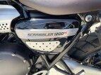 2020 Triumph Scrambler XC for sale 201071425