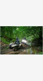 2020 Yamaha Kodiak 450 for sale 200811368