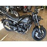 2021 Benelli Leoncino for sale 200968987