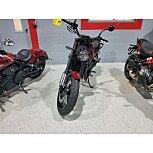 2021 Benelli Leoncino for sale 201058072