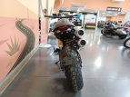 2021 Ducati Scrambler 1100 Pro for sale 201110062
