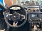 2021 Ford Mustang GT for sale 101452332