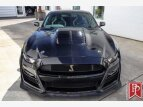 2021 Ford Mustang Shelby GT500 for sale 101531397