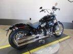 2021 Harley-Davidson Softail for sale 201024030
