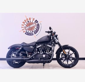 2021 Harley-Davidson Sportster Iron 883 for sale 201042887