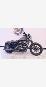 2021 Harley-Davidson Sportster Iron 883 for sale 201042888