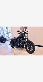 2021 Harley-Davidson Sportster Iron 883 for sale 201042889