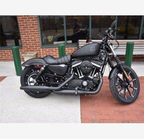 2021 Harley-Davidson Sportster for sale 201053912