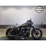 2021 Harley-Davidson Sportster Iron 883 for sale 201062051