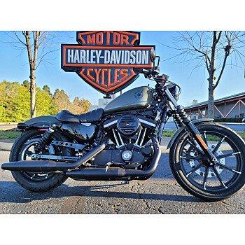 2021 Harley-Davidson Sportster Iron 883 for sale 201063440