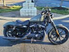 2021 Harley-Davidson Sportster Iron 883 for sale 201063440