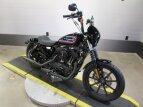 2021 Harley-Davidson Sportster Iron 1200 for sale 201064495