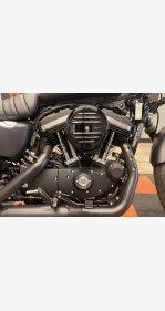 2021 Harley-Davidson Sportster Iron 883 for sale 201070534