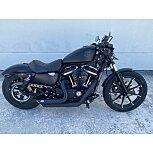 2021 Harley-Davidson Sportster Iron 883 for sale 201164352