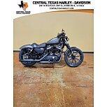 2021 Harley-Davidson Sportster Iron 883 for sale 201164577