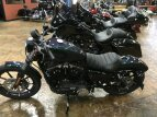 2021 Harley-Davidson Sportster Iron 883 for sale 201173525