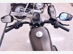 2021 Harley-Davidson Sportster Iron 883 for sale 201173956