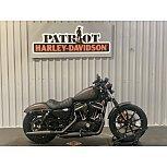 2021 Harley-Davidson Sportster Iron 883 for sale 201174769
