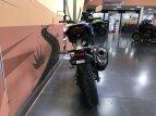 2021 Honda CB300R for sale 201050192