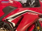 2021 Honda CBR300R for sale 201149075