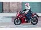 2021 Honda CBR300R ABS for sale 201149102