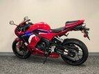 2021 Honda CBR600RR for sale 201149296
