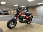 2021 Honda Monkey ABS for sale 201070860