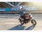 2021 Honda Monkey for sale 201164166