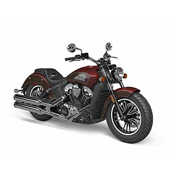 2021 Indian Scout for sale 200986409