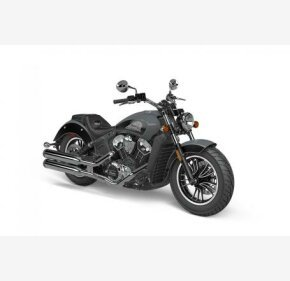 2021 Indian Scout for sale 200998138
