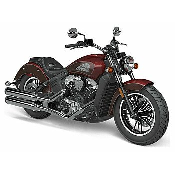 2021 Indian Scout for sale 201016733
