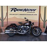 2021 Indian Scout for sale 201024417