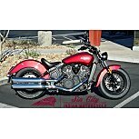 2021 Indian Scout for sale 201030753