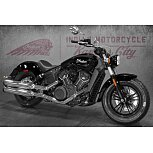 2021 Indian Scout for sale 201040558
